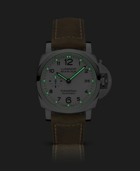 PAM01523 with Night View